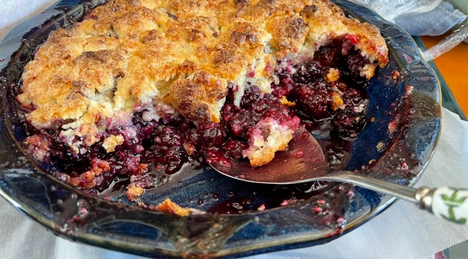 Summer Blackberry Cobbler with Coconut Pecan Topping