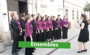 Youth choir singing outside town hall