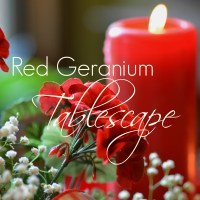 Red Geranium Tablescape - Welcome to a Garden Party!
