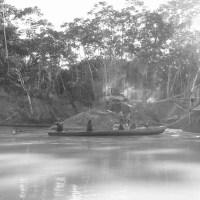 Mongabay article wins environmental news reporting prize