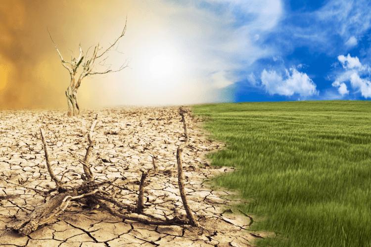 fenómeno del niño, cambio climático, clima en bogotá, contaminación,