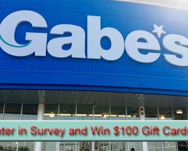 Gabe's Customer Experience Survey
