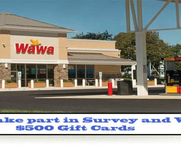 Wawa Survey