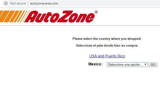 Autozone Survey