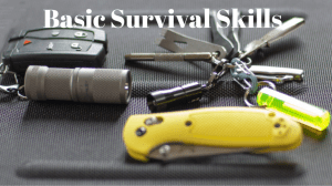 how can i learn survival skills