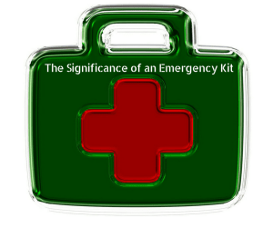 how to make emergency survival kits