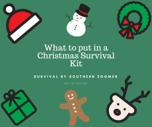 what to put in a christmas survival kit