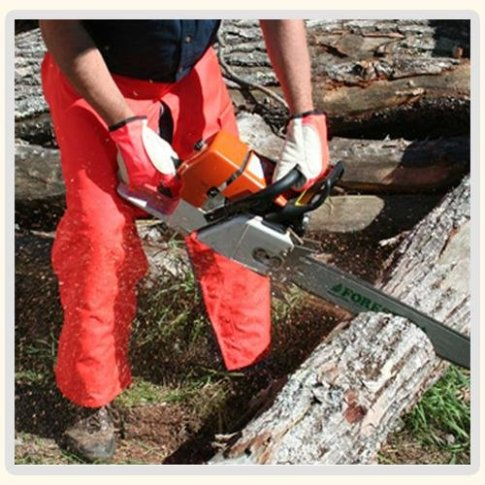 Best Chainsaw Chaps - Protective Chainsaw Pants for Safe