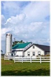 farm house with silo