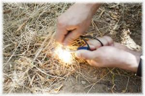Top 10 Wilderness Survival Myths