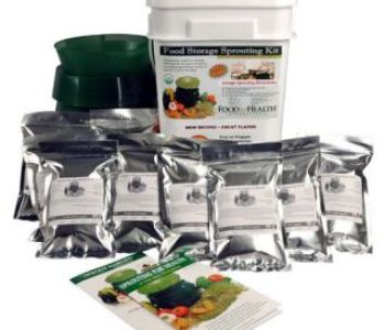 Emergency Fund Survival Seeds