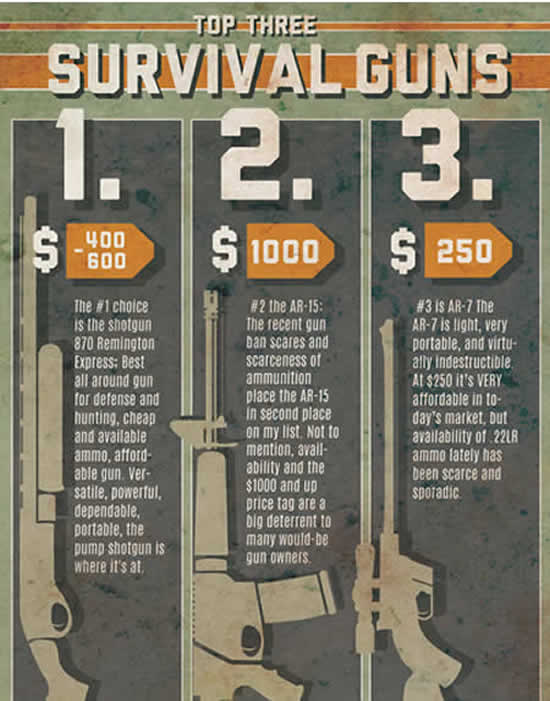 Top Three Survival Guns