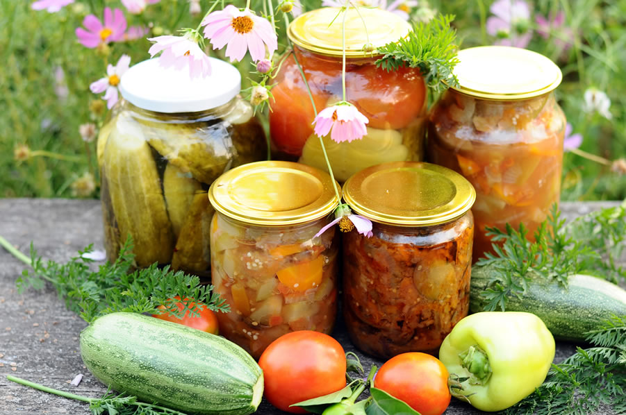 Food Storage and Food Preservation