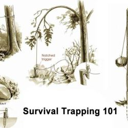 Survival Traps to Catch Small Game - Deadfalls and Snares