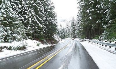Feature | Safe Driving Tips For Winter Travel