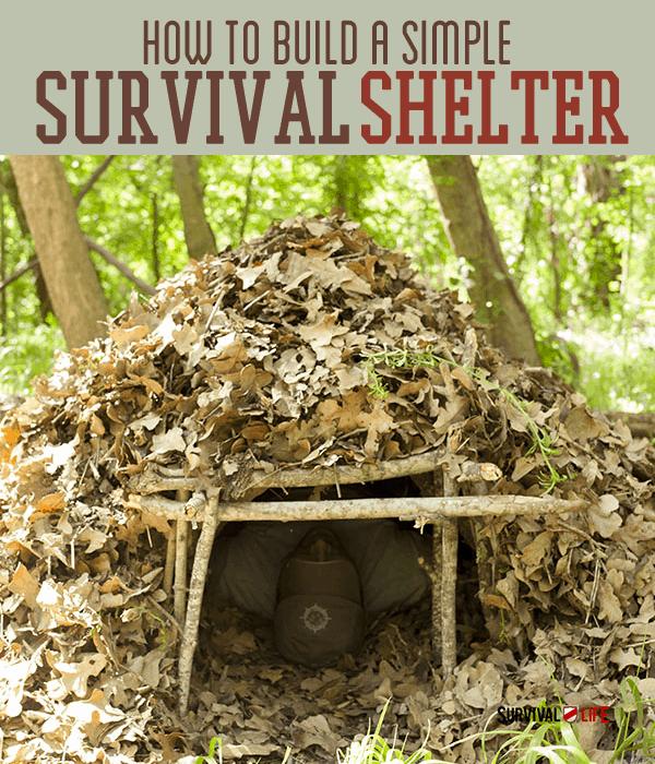 Placard   Emergency Shelter DIY   Basic Survival Skills