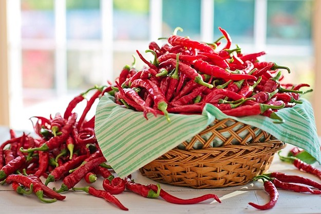 Cayenne Pepper | Medicinal Plants That Could Save Your Life