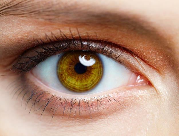 watchful eye, preparedness, emergency preparedness, survival skills