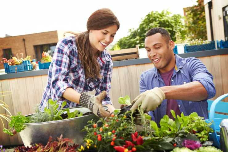 Mixed race couple planting rooftop garden together | Family Preparedness: What Are Your Survival Principles?