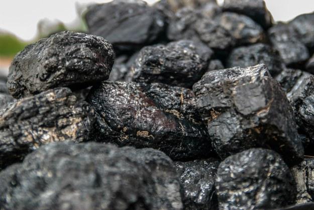 Coals | Make a DIY Survival Water Filter | Survival Tips