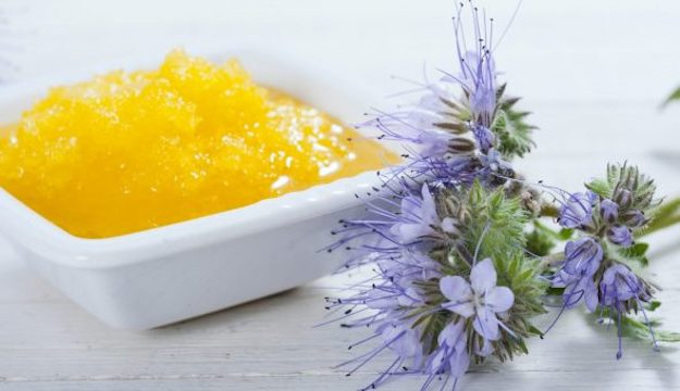 Naturally Crystallized Honey | The Benefits of Honey