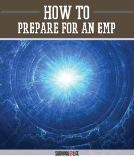Image result for electromagnetic pulse