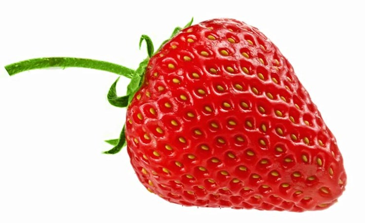 strawberries make great survival seeds