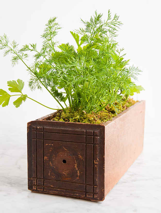 Heb Garden Planter |10 Gardening Tips and Tricks That Everyone Should Know