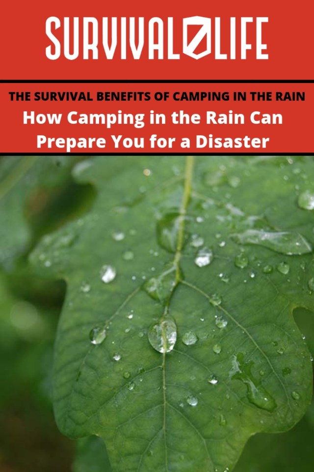 Placard | How Camping in the Rain Can Prepare You for a Disaster