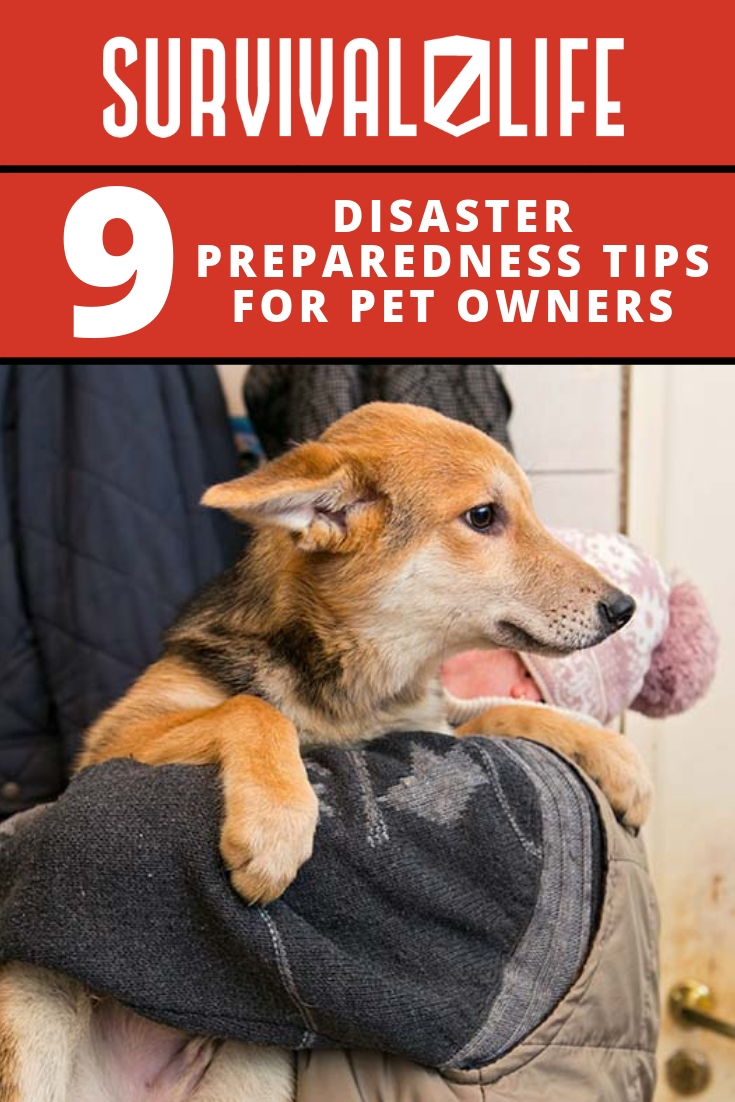 Check out 9 Disaster Preparedness Tips for Pet Owners at https://survivallife.com/disaster-preparedness-tips-for-pet-owners/