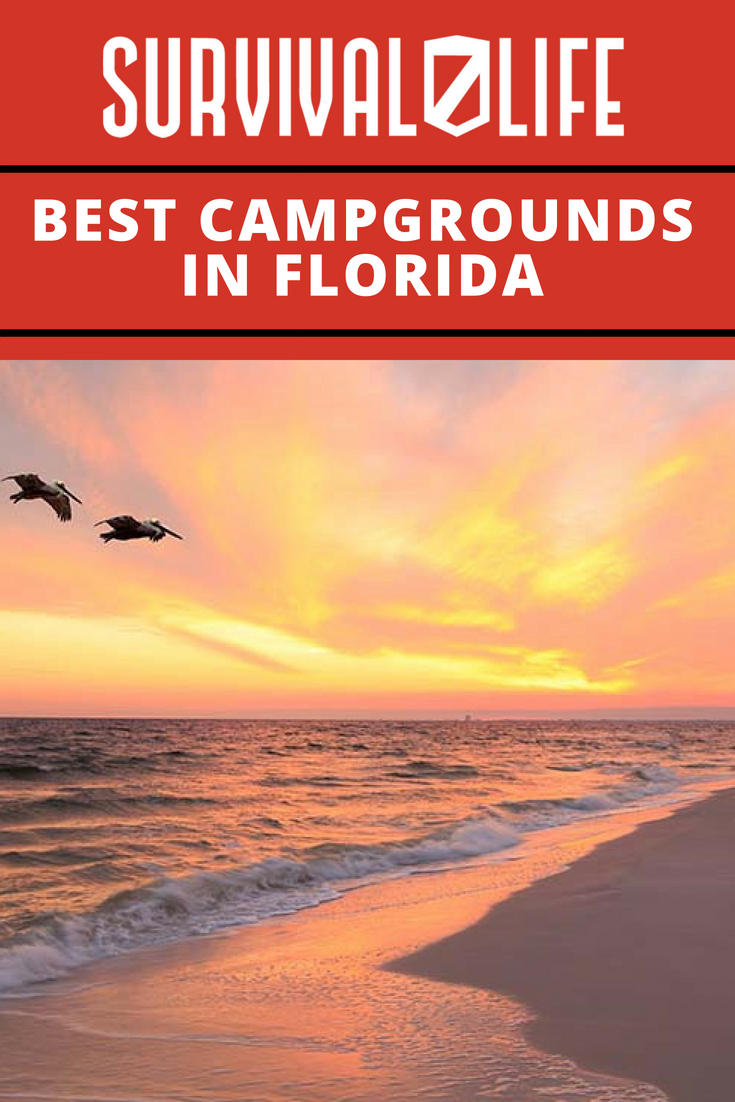 Check out Best Campgrounds in Florida at https://survivallife.com/best-campgrounds-florida/
