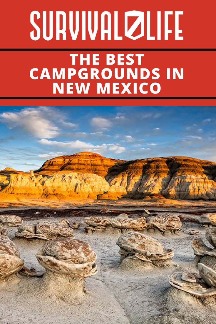 The Best Campgrounds In New Mexico   https://survivallife.com/best-campgrounds-in-new-mexico/
