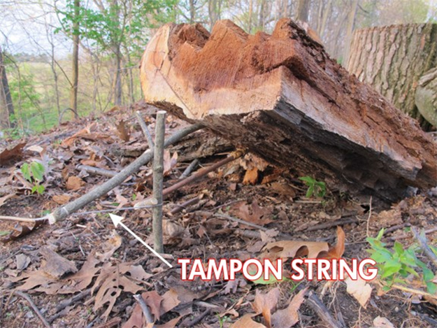 Cordage | Surprising Survival Uses for a Tampon