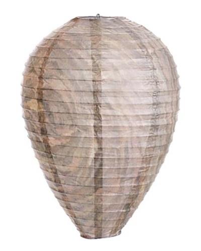 02 wasp nest