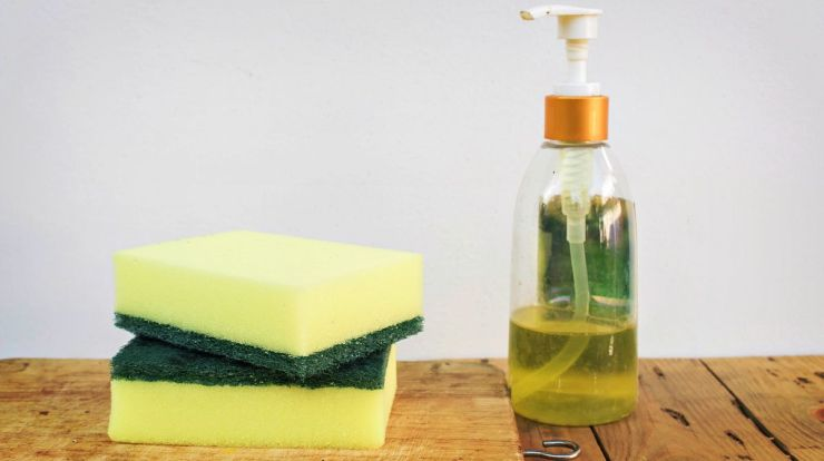 Sponge and dish washing liquid on wood table | Fight An Ant Invasion Naturally With These Tips