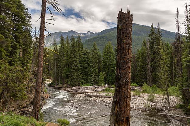 10 wenatchee national forest