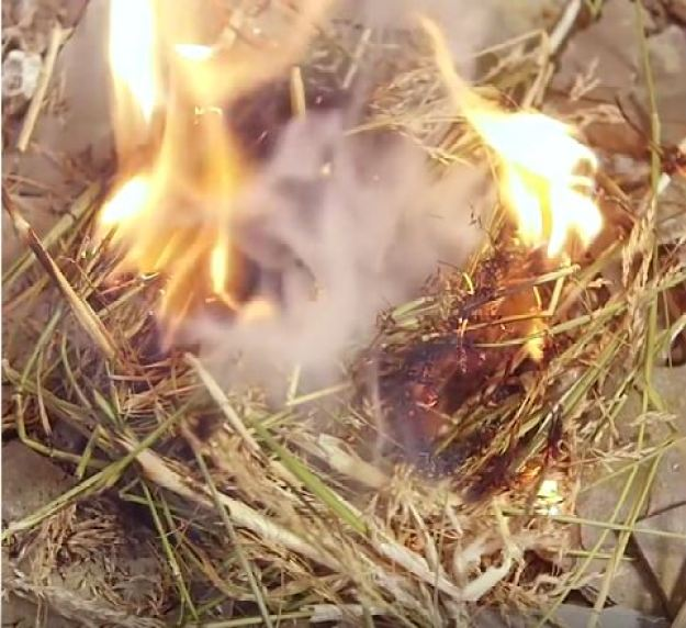 """Fire starting complete! 