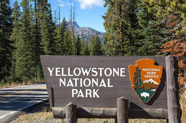 Yellowstone National Park | Explore the Wild, Wild West in Wyoming