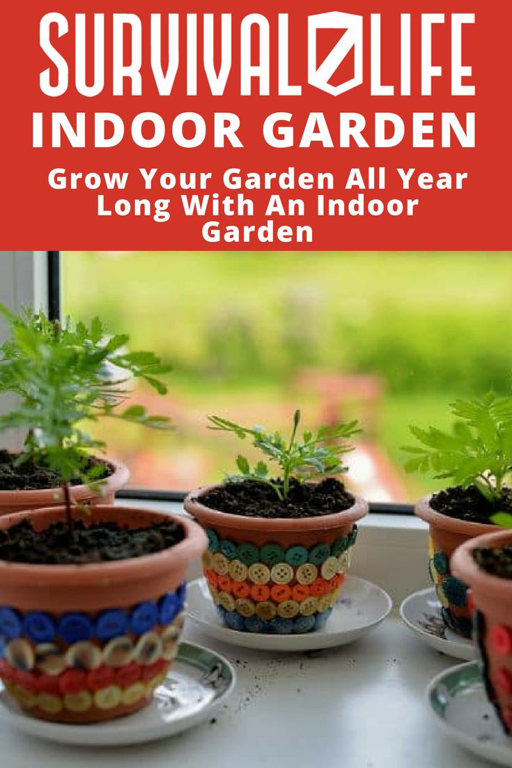 Grow Your Garden All Year Long With An Indoor Garden | https://survivallife.com/indoor-gardening-year-round