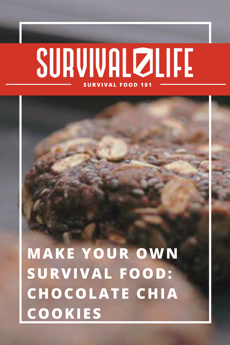 Check out Make Your Own Survival Food: Chocolate Chia Cookies at https://survivallife.com/survival-food-diy-chocolate-chia-cookies/