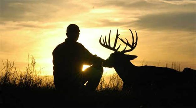 Deer Hunting Season | Connecticut Hunting Laws and Regulations