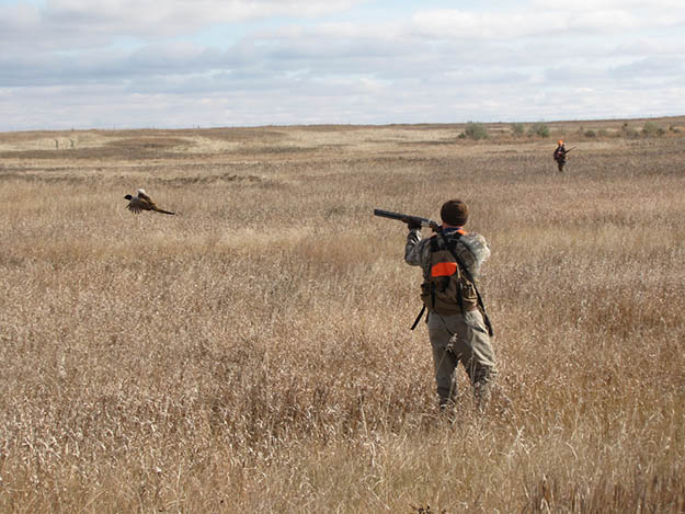General Hunting Information | Delaware Hunting Laws and Regulations
