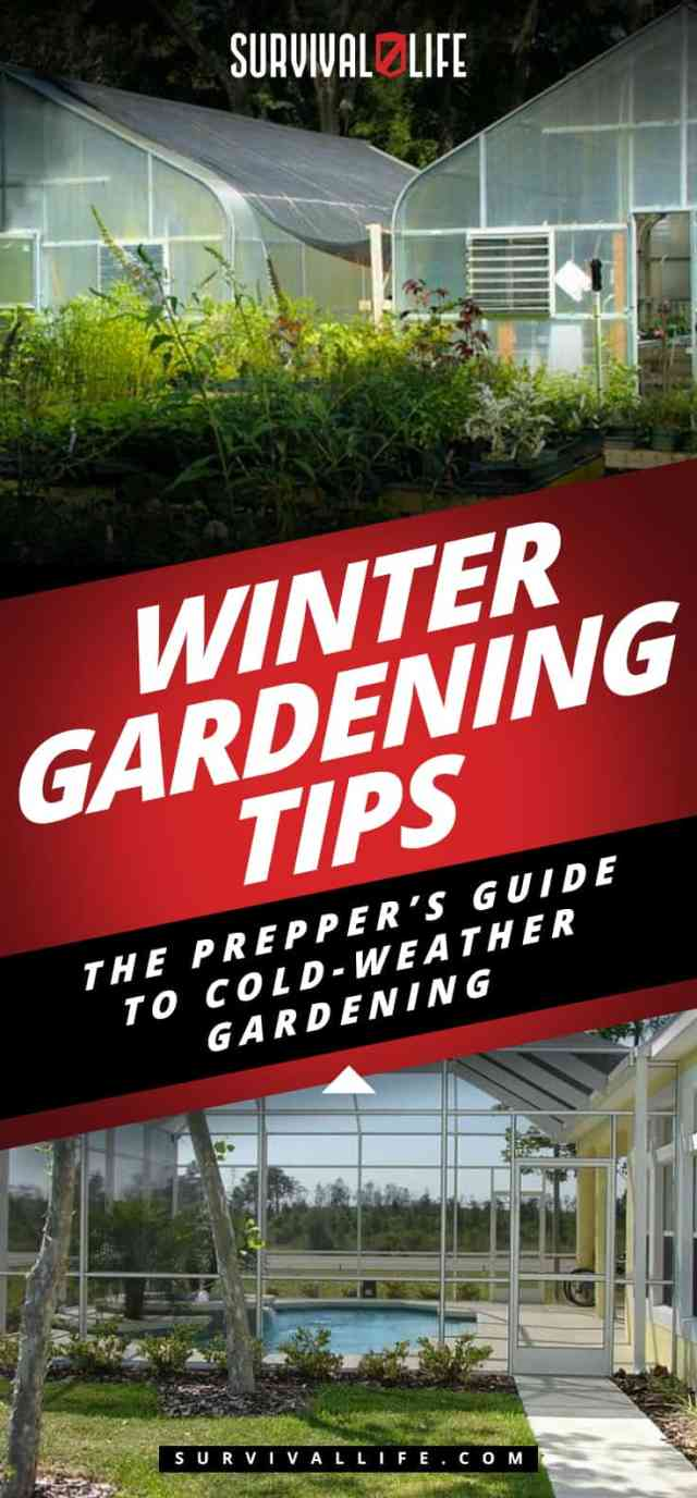 Placard | Winter Gardening Tips: The Prepper's Guide to Cold-Weather Gardening