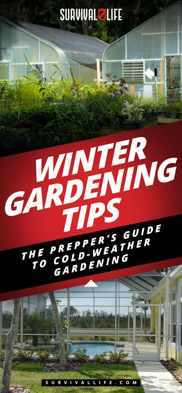 Placard | Winter Gardening Tips: The Prepper's Guide to Cold-Weather Gardening | gardening in winter months