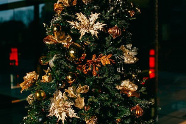 """Preventing Christmas Tree Fires 