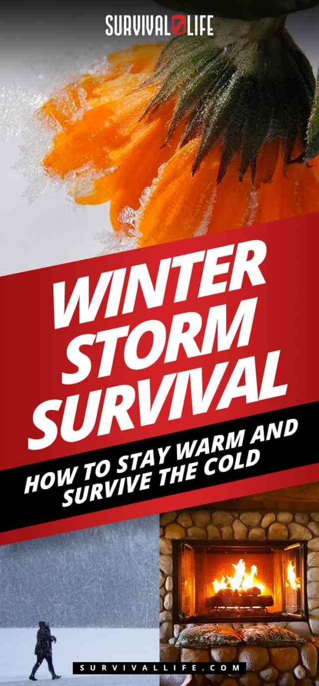 Placard   Winter Storm Survival: How to Stay Warm and Survive the Cold