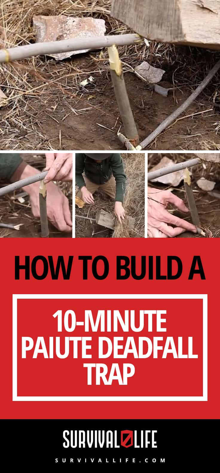 How To Build a 10-Minute Paiute Deadfall Trap