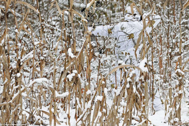 The environment is your ally. Fit in. | 5 Ways To Maximize Camouflage Concealment