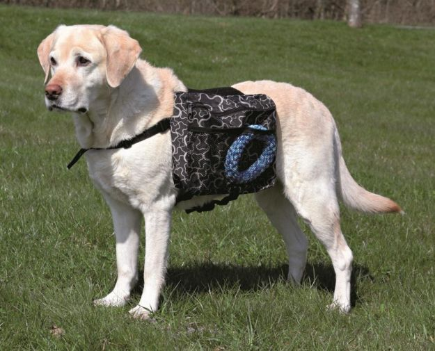 Dog Rucksack   Fido On The Hunt - A Complete Guide To Dog Hunting Gear