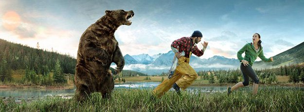 Don't Run | How To Survive A Bear Attack